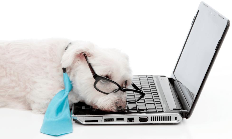 Cómo escribir contenido eLearning atractivo sin ser un experto thumbnail