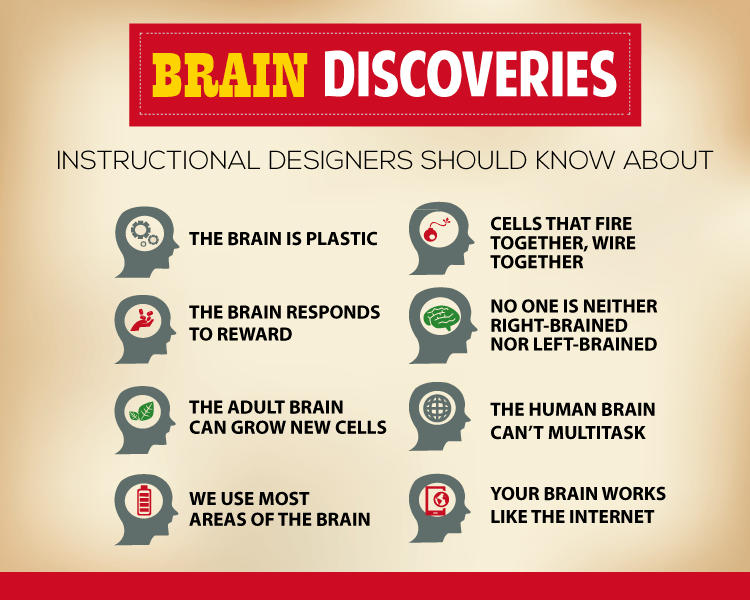8 Brain Research Discoveries Every Instructional Designer Should Know About thumbnail