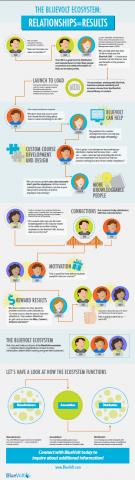 Infographic: The BlueVolt Ecosystem thumbnail
