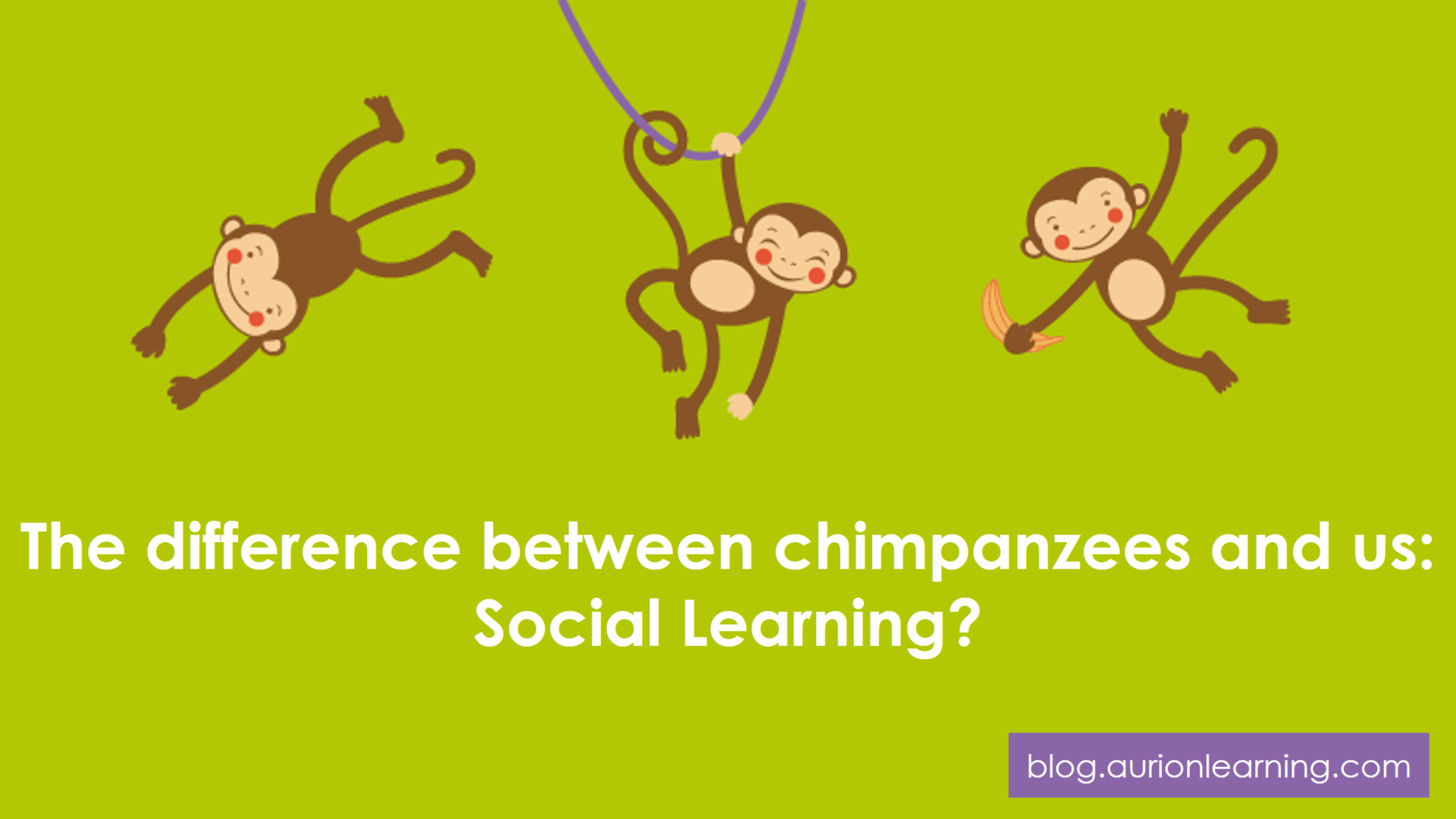The difference between chimpanzees and us: Social Learning? | Aurion Learning thumbnail