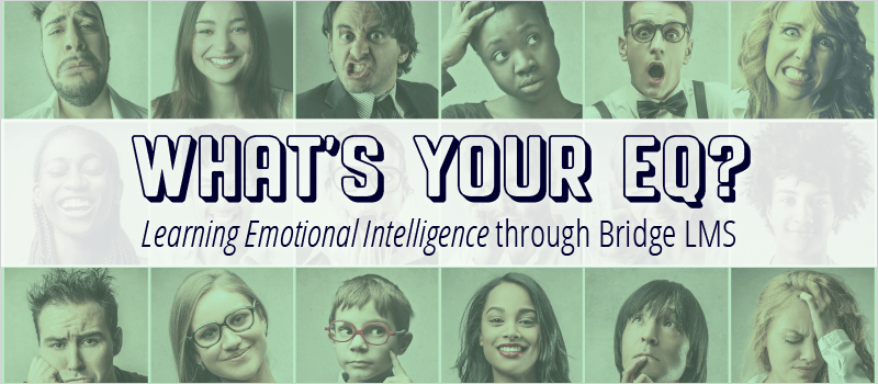 What's Your EQ? Learning Emotional Intelligence through Bridge LMS - eLearning Brothers thumbnail