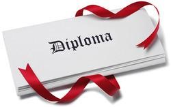 Accredited Dipoma programmes LSIB thumbnail